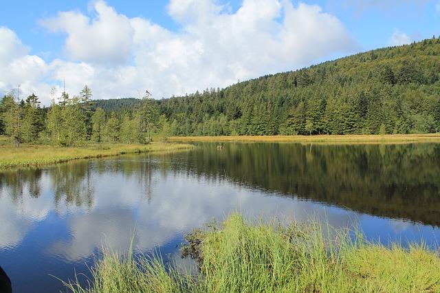 Que visiter dans les Vosges en été ?