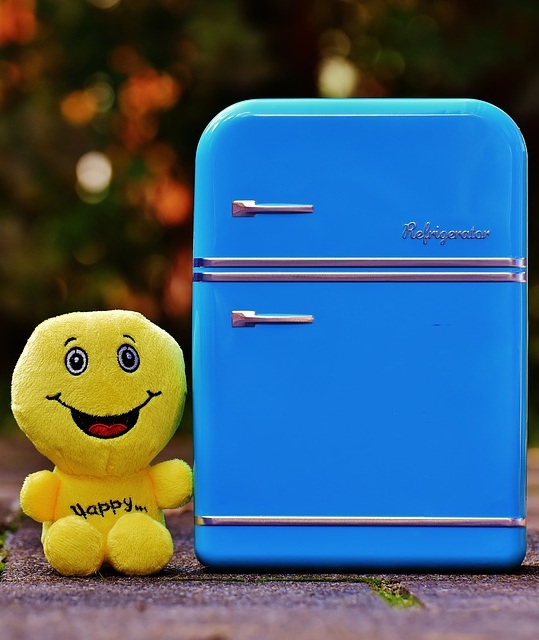 Les différentes utilisations du mini frigo
